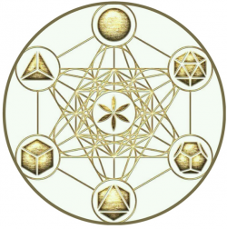 Ronaldo Amaral - tarô, astrologia e terapia floral